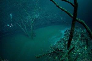 Sungai di dalam Laut 22