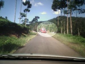 Pembalakan Hutan di cianjur